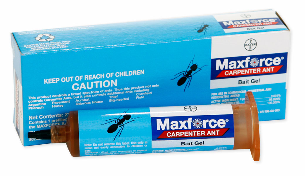 Hi, I am looking for shipping cost on the MaxForce carpenter Ant gel to Canada.